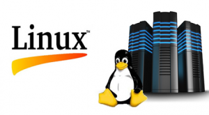 Linux-Server-TechMR