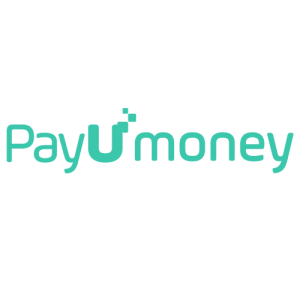PAY U MONEY logo-TechMR